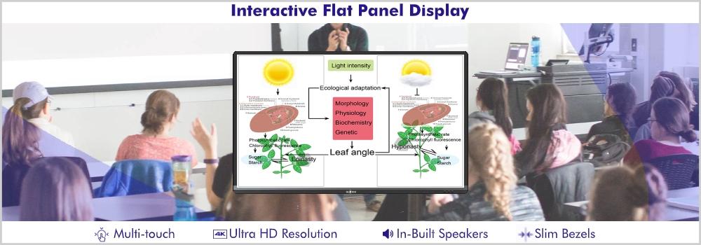 Interactive Flat Panel Display