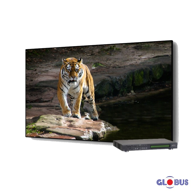 globus video wall 1x1 matrix with controller