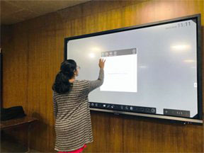 Globus Interactive Display for education