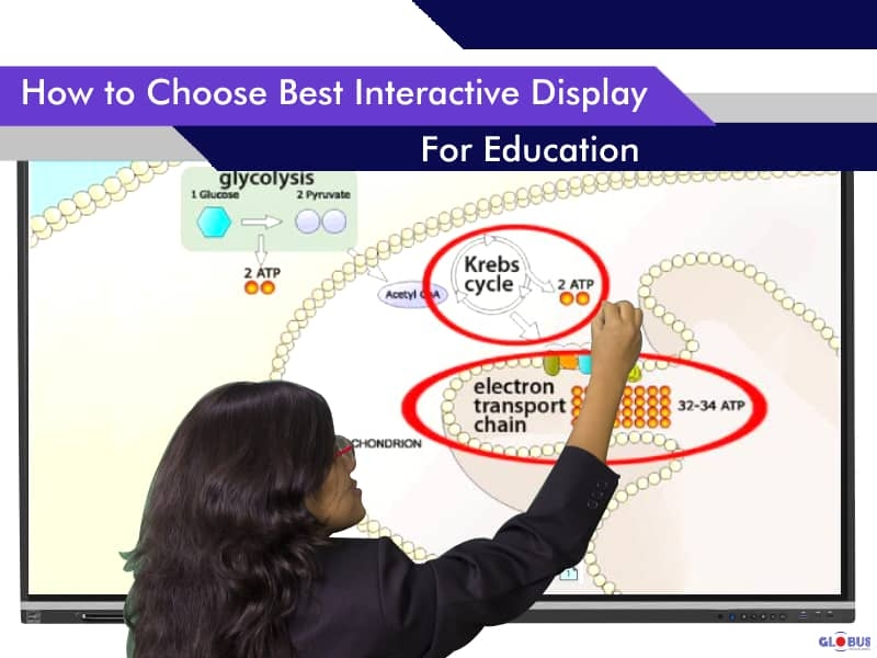 how-to-choose-best-interactive-display